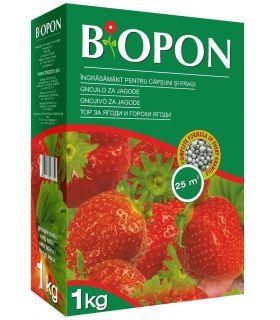 Biopon Ingrasamant Capsuni si Fragi 1 kg