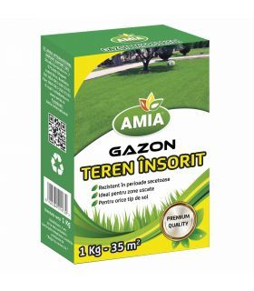 Seminte Gazon Teren Arid 1 Kg Amia