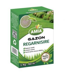 Seminte Gazon Regarnisire 1Kg Amia